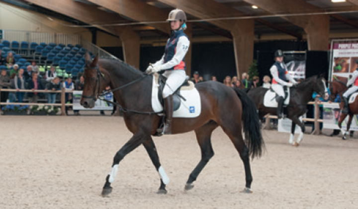 Finale Harry's Horse Zitcompetitie