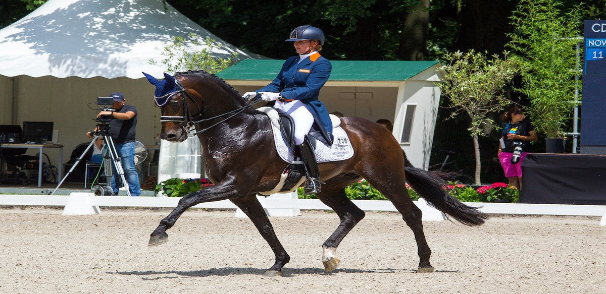 Nederlands dressuurteam derde in Nations Cup Denemarken *Update