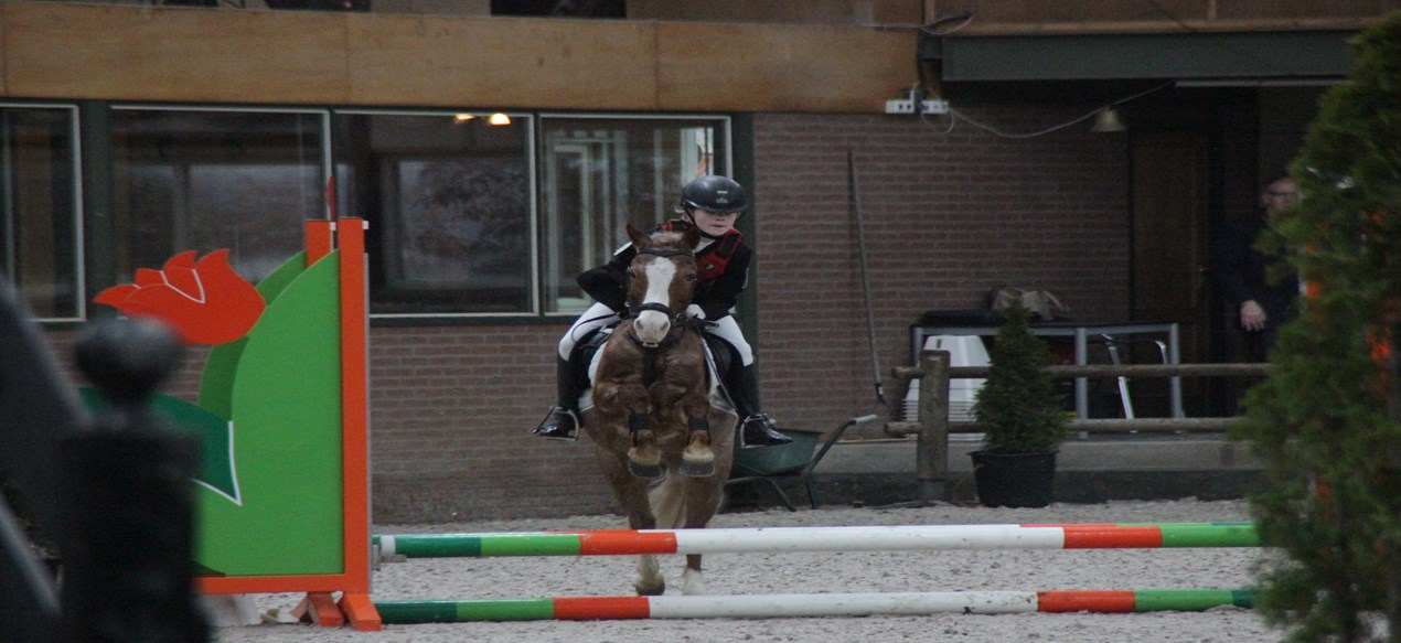 Spannende halve finale KNHS FNRS Springcompetitie