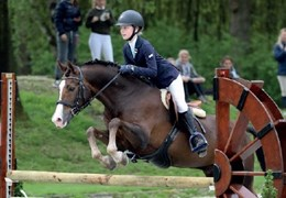 Hunter-Jumper Equitation
