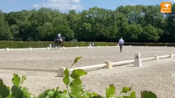 Dressuurtop TeamNL traint in Ermelo *Met Video*