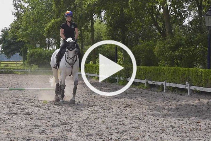 Instructievideo's eventing