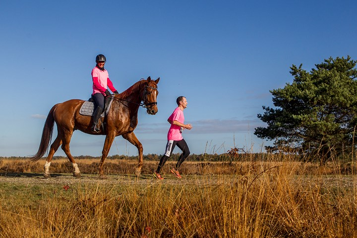 Ride & Run: ruiters, hardlopers en mountainbikers domineren Ermelose heide