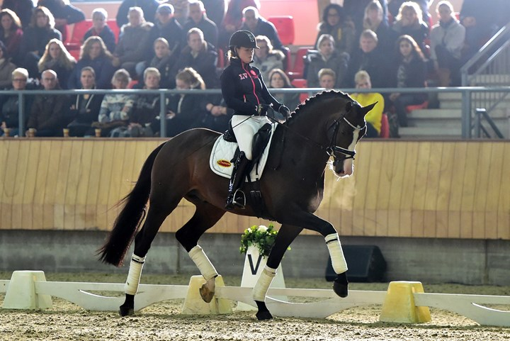 Hamminga en Rothenberger trainen naar harmonie