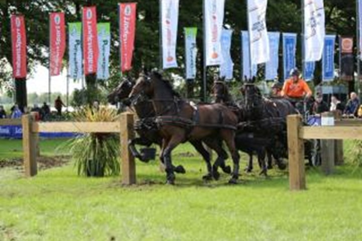 Nederlands vierspanteam op winstkoers in Breda