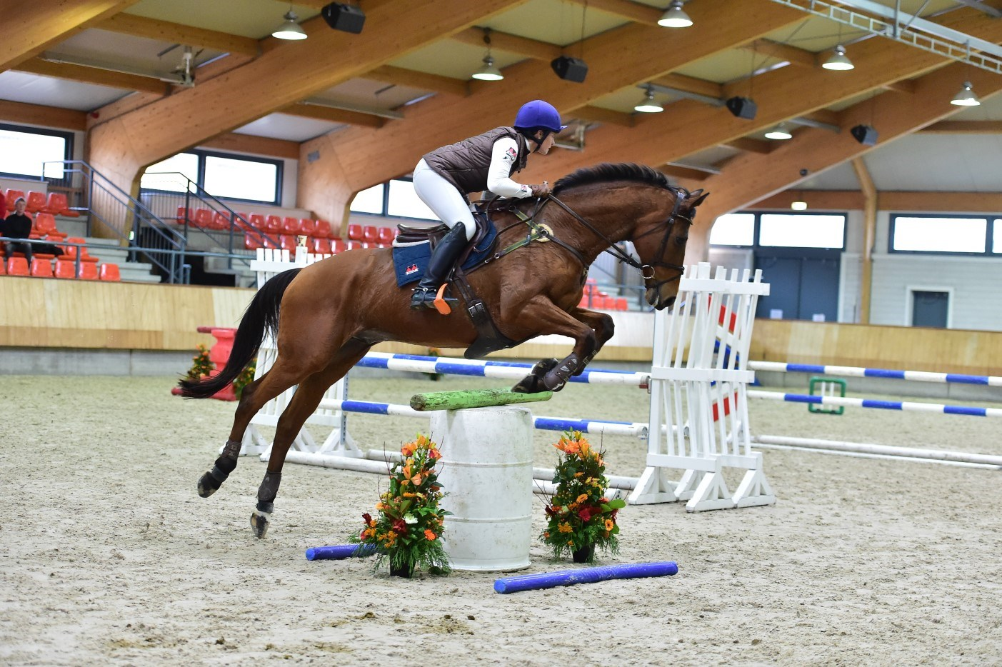 Olympische eventing amazones op KNHS Trainersseminar 2019 *video*
