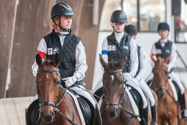 Data Harry's Horse Zitcompetitie 2019
