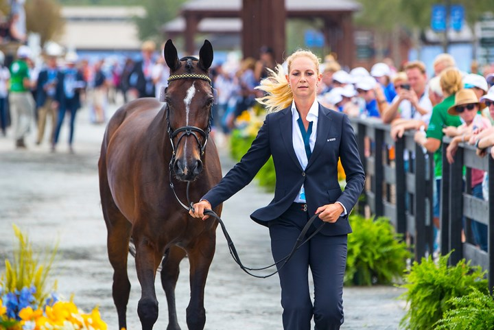 Tryon 2018: Eventingpaarden door tweede veterinaire keuring