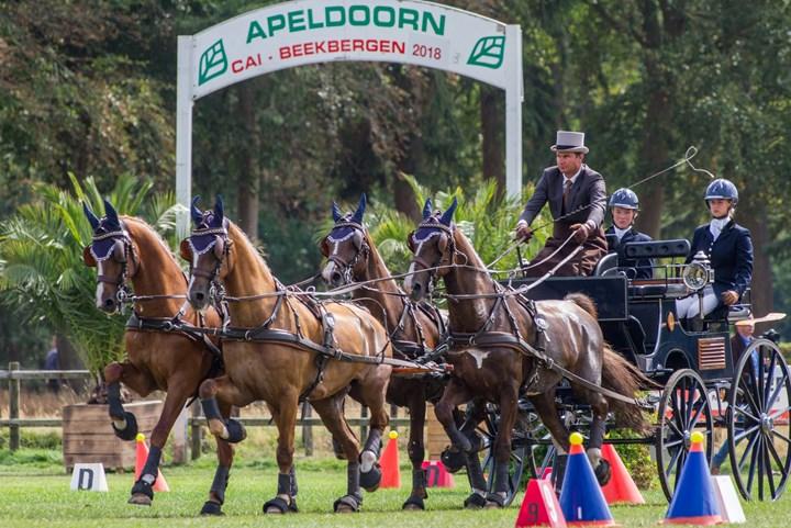 Paardenspektakel Beekbergen Bijna Van Start Knhs