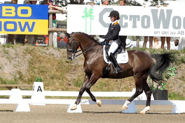 Anders dan anders voor dressuurruiters in Hickstead