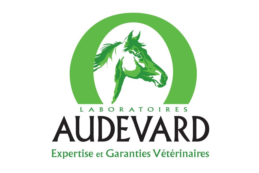 Audevard Next Endurance Generation