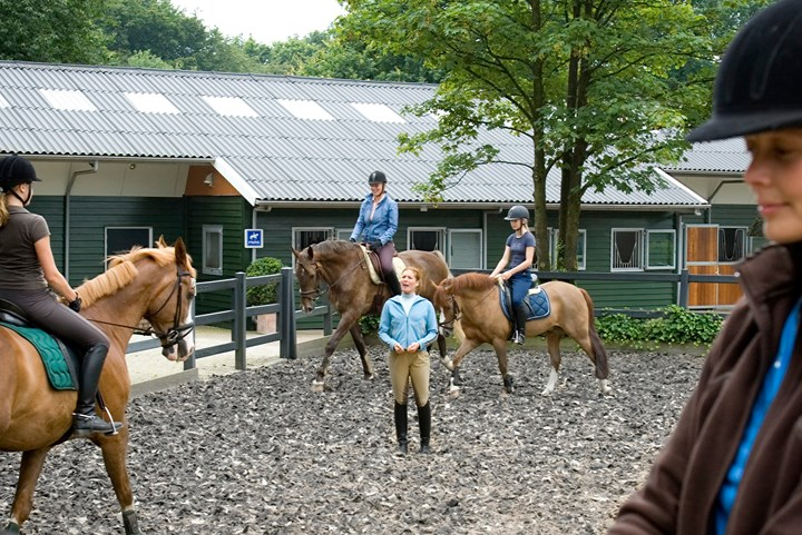 Manege instructeur worden? Volg de opleiding Instructeur Basissport Manege! *Video*