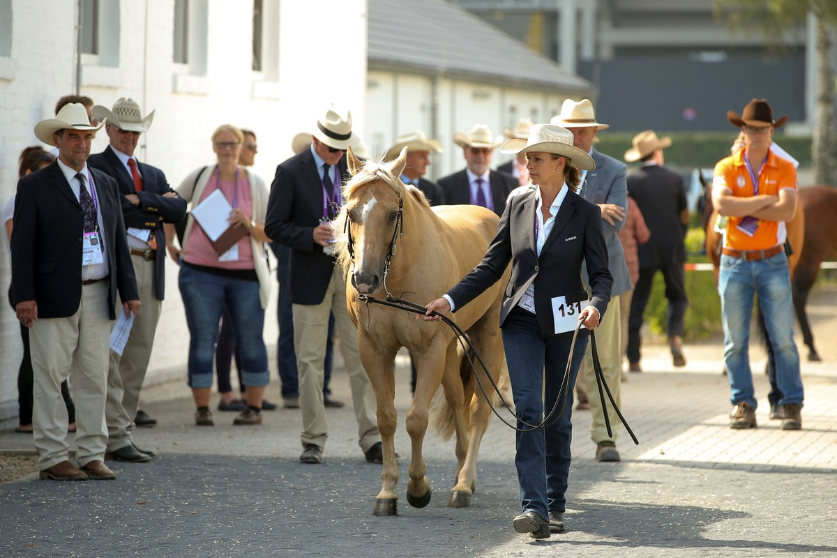 Gunstige loting voor Nederlands Reining Team