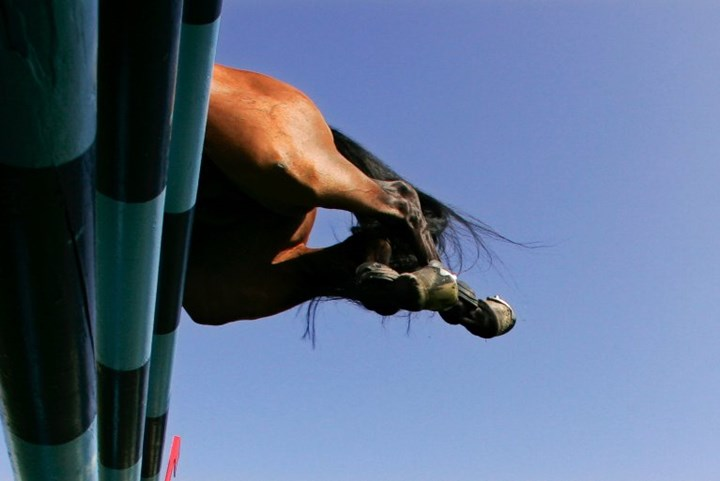 Grand Prix in Spruce Meadows live op Horse & Country TV