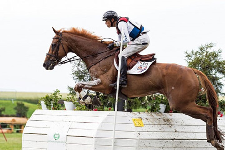 Eventingteam derde in Nations Cup Waregem