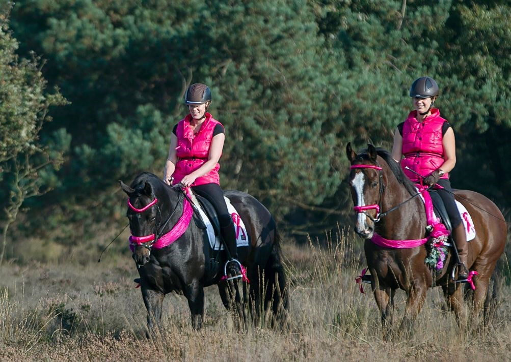 Enjoy the Ride voor Pink Ribbon: halen we de €25.000?