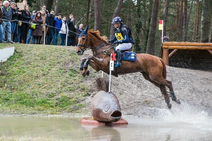 Oranje eventingteam stelt teleur in Nations Cup