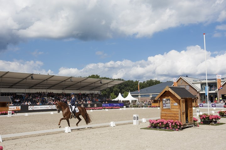 Pavo sponsor selectie World Breeding Dressage Championships